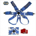 FIA 6 Point Harness